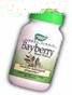 BAYBERRY MEDICINE1