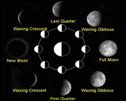 2014 moon phases