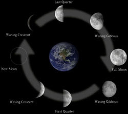 2015 moon phases