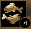 2016 双鱼座