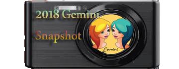 2018 Gemini  Snapshot