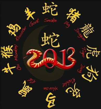 year of snake - 2013