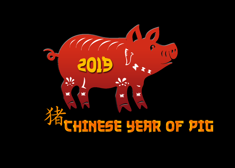 year of pig - 2019