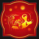 2014 Chinese horoscope for - Pig