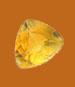 Danburite Gemstone